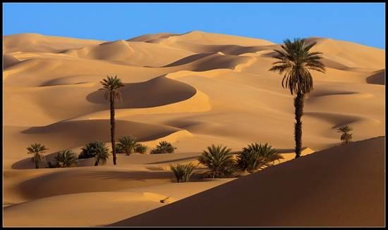 Gurun Sahara (Sumber: kfein.blogspot.co.id)